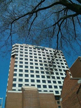 Novotel Ottawa: Hotel Building