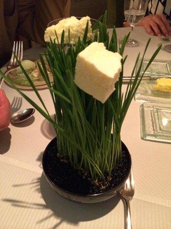 Gourmetrestaurant Vendôme: Weizengras mit dehydriertem Schokoladenparfait (Dessert!!!)