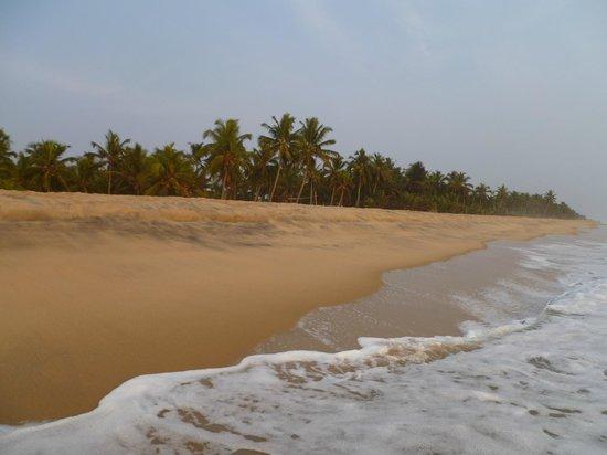 Neeleshwar Hermitage: Beach view