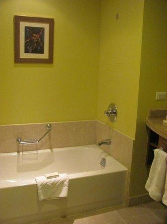 Hilton Barbados Resort : Baño