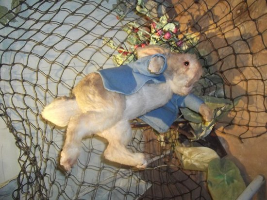 The World of Beatrix Potter: Peter Rabbit