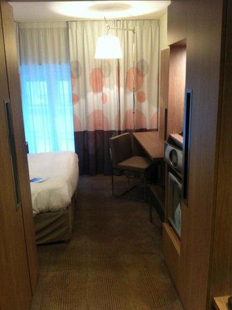 Novotel Toulouse Centre Wilson : Vista dall'ingresso della camera