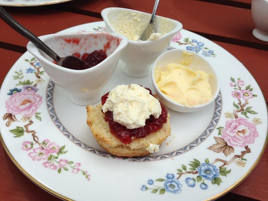 The Bluebell Cafe at Barrowmore: Lovely scone with jam & cream