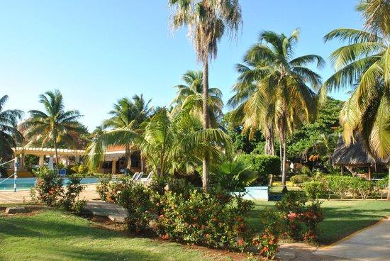 Hotel Roc Barlovento: garden
