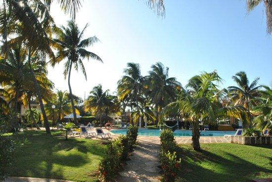 Hotel Roc Barlovento: pool and garden