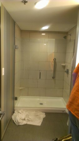 Embassy Suites by Hilton Knoxville West: 2 person Shower