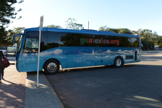 Charlie Drew Cancun Tours and Activities: The bus they used