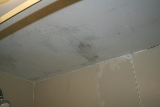 Red Roof Inn Charlottesville: possible mold on bathroom ceiling