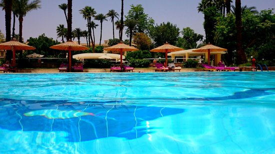 Pavillon Winter Luxor : PISCINE