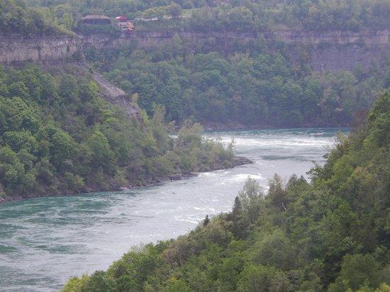 Niagara Glen Nature Areas: View of the Niagara from the Niagara Glen Building.