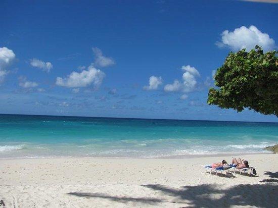 Bougainvillea Beach Resort: playa