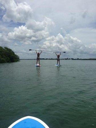 Sarasota Paddleboard Company: Great Day on PaddleBoards