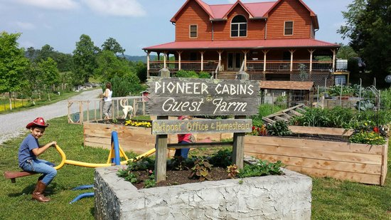 Pioneer Cabins & Guest Farm: My kids playing