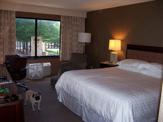 Sheraton Reston Hotel: Our King Room
