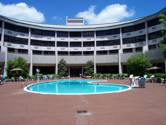 Sheraton Reston Hotel: Hotel Pool