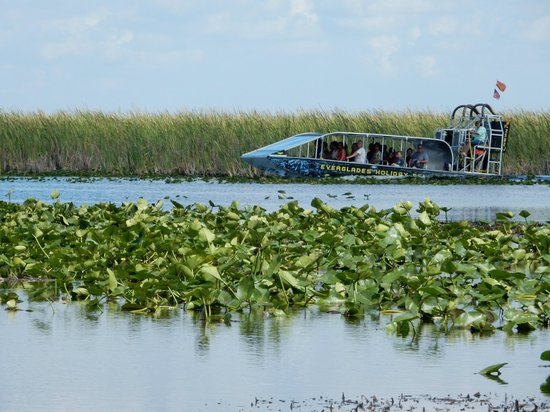 Everglades Holiday Park : Airboat ride