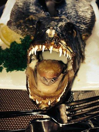 "Jumeirah Vittaveli: Улов дня - заказанное блюдо на обед через ""румсервис"". Впечатляет!"