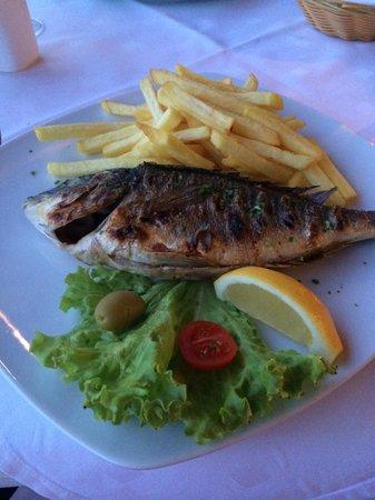 Hotel Bozica: Sea bass !!