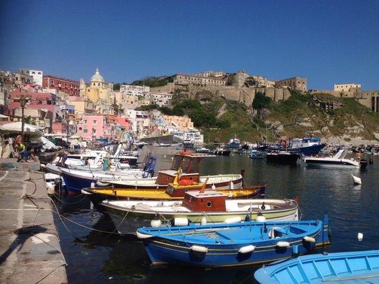 The Port of Corricella: Dal basso