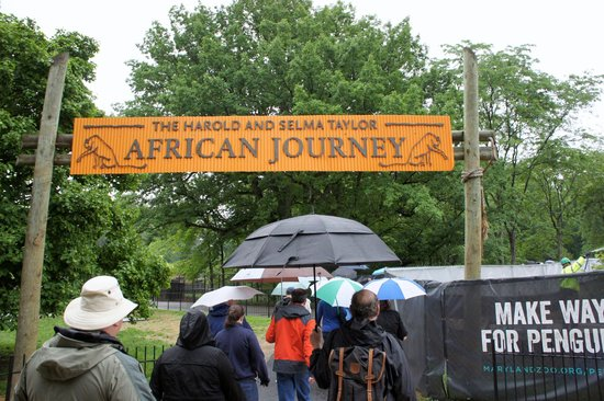 The Maryland Zoo: African Journey scavenger hunt