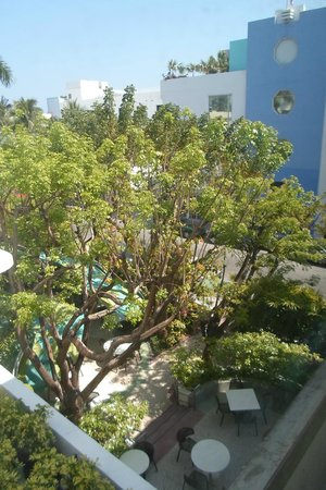 The Hotel of South Beach : vue de la chambre sur le jardin