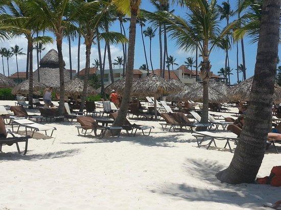 Secrets Royal Beach Punta Cana: Strand, Hotelblick