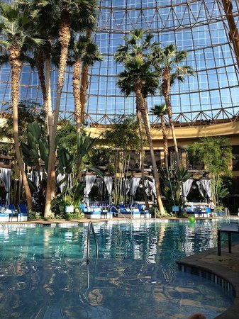 Harrah's Resort Atlantic City: Pool