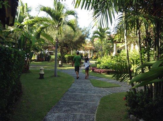 Arya Amed Beach Resort: Hubby & kid on the premises