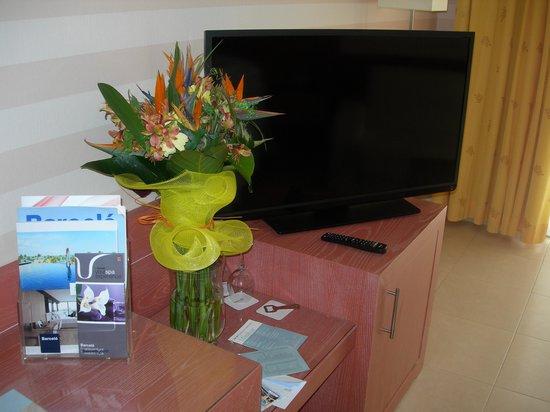 Barcelo Fuerteventura Thalasso Spa: DETALLE VARIOS