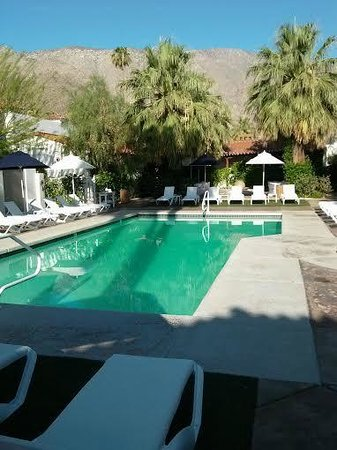 Alcazar Palm Springs: Pool View