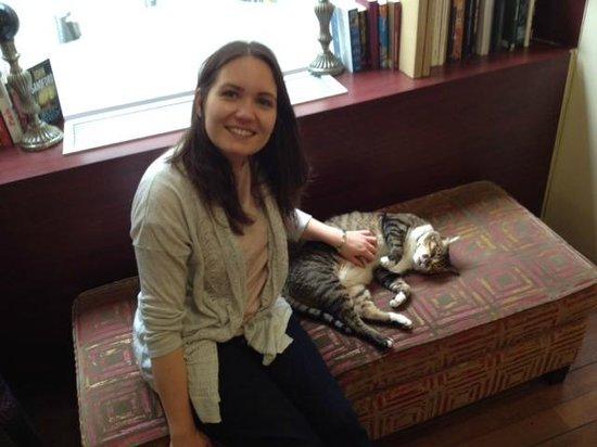 Hotel Vivienne : Hotel cat