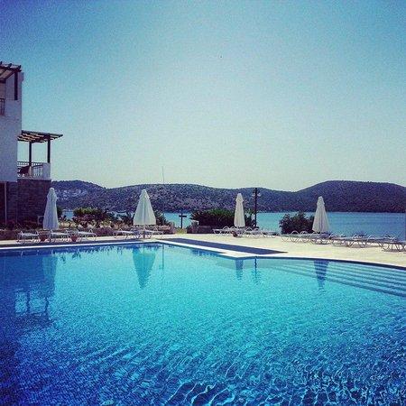 Aktur Residence : pool