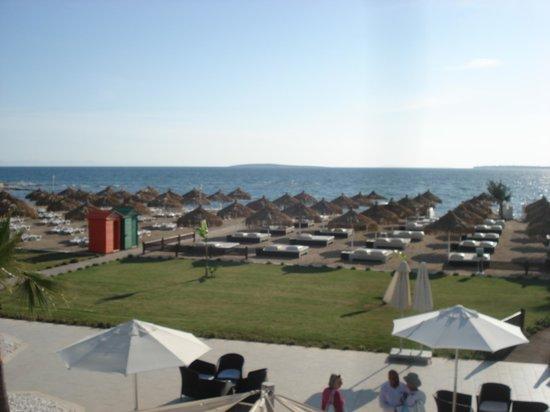 CLC Apollonium Spa & Beach: A place to sunbathe