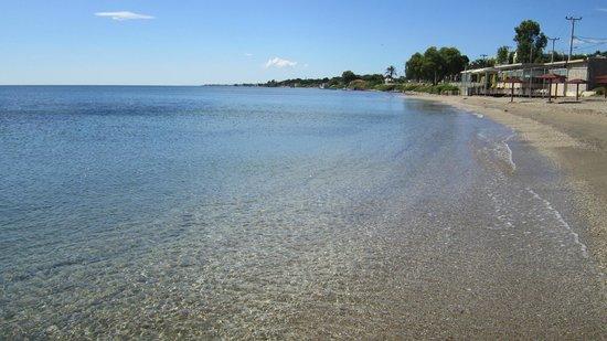 Hotel Thomas Beach Пляж в Nea Makri
