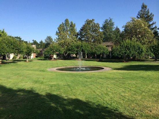Silverado Resort and Spa: Fountain
