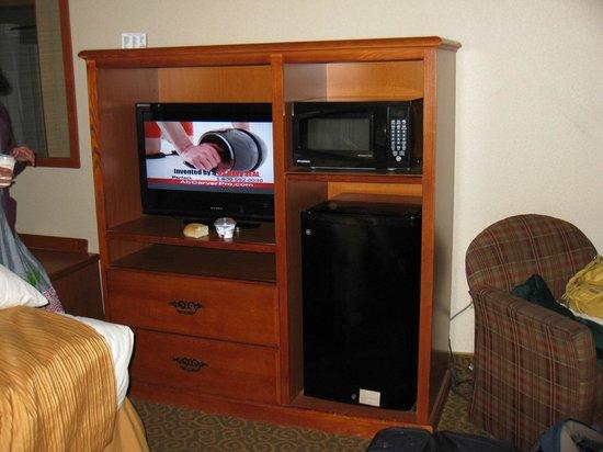 EconoLodge: TV and MicroFridge