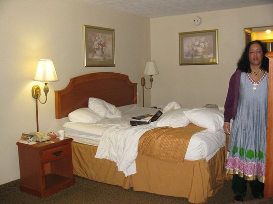 EconoLodge: Bed area
