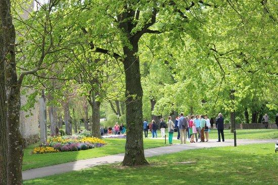 Burggarten: Jardim