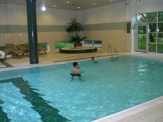 Hotel Okura Amsterdam: Hallenbad