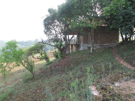 Jenukallu Valley Resort Pvt. Ltd.: Cottages