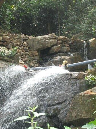 Jenukallu Valley Resort Pvt. Ltd.: Waterfalls in resort