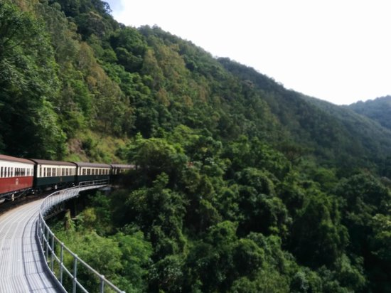 Skyrail Rainforest Cableway: The train winding its way up the hill