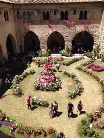Pope's Palace (Palais des Papes): Courtyard during rose festival/exhibition