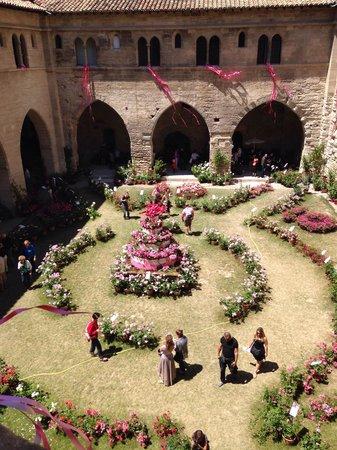 Palais des Papes : Courtyard during rose festival/exhibition