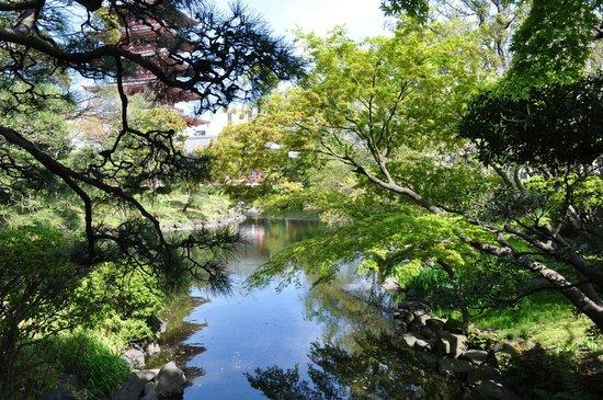 Asakusa Shrine: Japanese Gardens