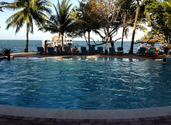Hamanasi Adventure and Dive Resort: Afternoon by the pool