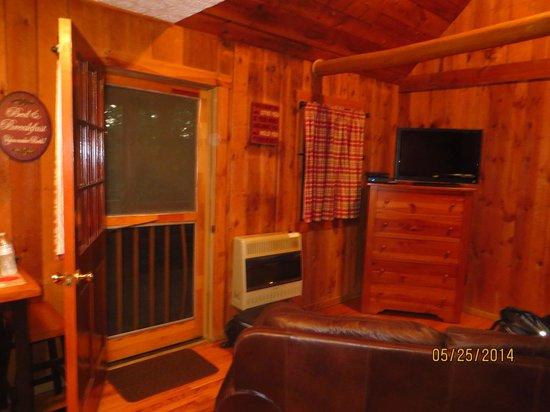 Hocking Hills Cabins: Tv and patio door