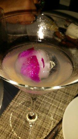 db Bistro Moderne: Fantastic Martini