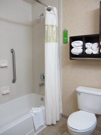 Hampton Inn Twin Falls Idaho: Bathroom in room 243.