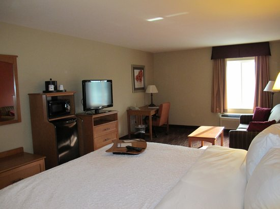 Hampton Inn Twin Falls Idaho: Room 243, photographed by bed.